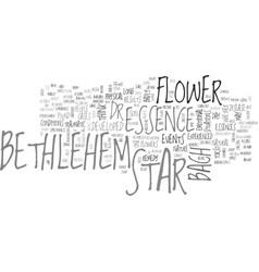 Bethlehem flower text word cloud concept vector