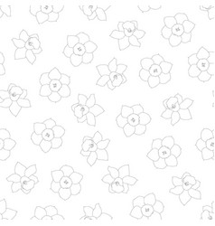 Daffodil - narcissus flower outline on white vector