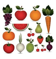 Fruit elements vector
