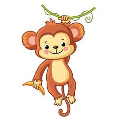 Monkey hangs on a branch vector