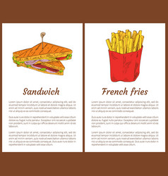sandwich and french fries vector image