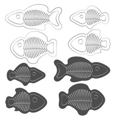 set of of fish with skeletons vector image