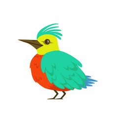 small bird with turquoise wings long nose and a vector image