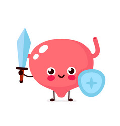 Strong cute healthy happy bladder vector