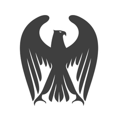 Majestic eagle or falcon with long wing feathers vector image