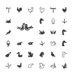 33 bird icons vector