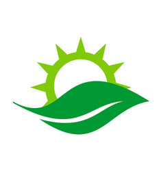 abstract nature leaf sun logo icon vector image