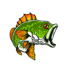 bass fish big perch perch fishing design element vector image
