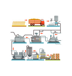 Beer brewing process production of beer vector