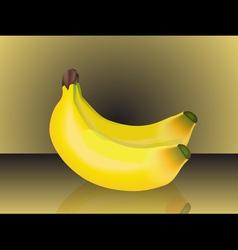 bunch bananas vector image