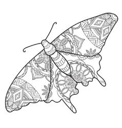 Detailed ornamental sketch a moth vector