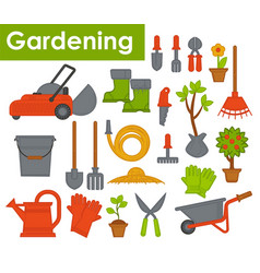 gardening tools and plants lawn mower spade and vector image