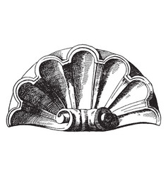 Scallop design shell was used as a decoration of vector