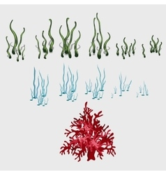 Set of underwater grass and coral reef elements vector