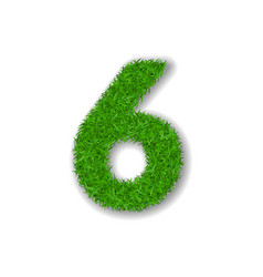 grass number six green 3d number six isolated on vector image