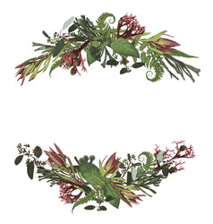 Set arc wreath greenery and leaves branches vector