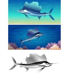 sailfish set vector image