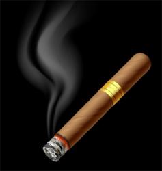 smoldering cigar vector image vector image