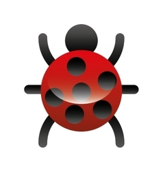 bug animal isolated icon vector image