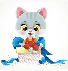 cute cartoon baby cat sit on big gift box vector image