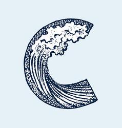 decorative capital letter c marine ancient style vector image