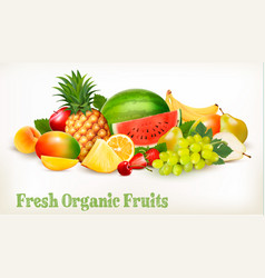 Food background with fresh colorful fruits vector