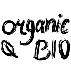 Organic Bio hand lettering Handmade calligraphy vector image