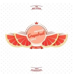 Premium quality grapefruit juice vector image