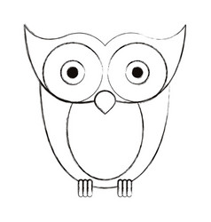 Sketch blurred silhouette image owl bird vector