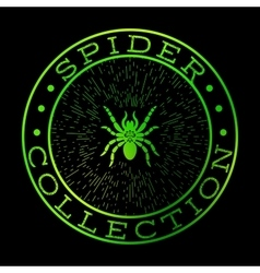 Spider collection green label design vector