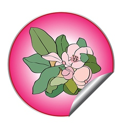 spring flower sticker vector image