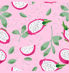 Summer pattern with dragon fruit pitaya flowers vector