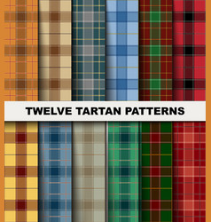 Twelve seamless set tartan pattern vector