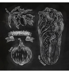 Vegetables onion napa cabbage olives chalk vector image