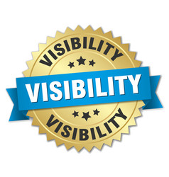 visibility round isolated gold badge vector image