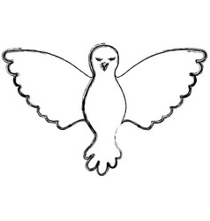pigeon peace front view on blurred silhouette vector image vector image