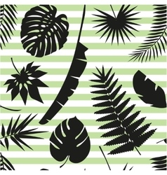 Beautiful seamless tropical jungle floral pattern vector image