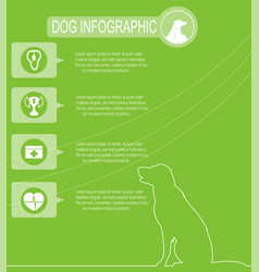 Dog infographics with icons vector