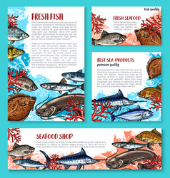 fishes sketch poster for seafood market vector image