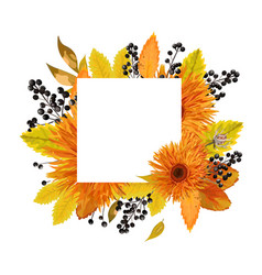 Floral design card autumn orange gerbera flower vector