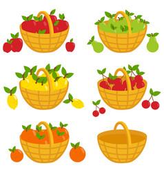 Fruit baskets vector