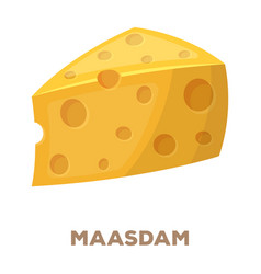 Maasdamdifferent kinds of cheese single icon in vector