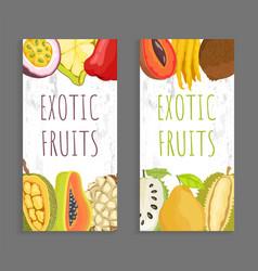 Mamey citron sugar apple pomelo brochure vector