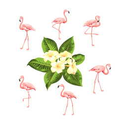tropical birds and flowers collection pink vector image