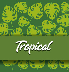 Tropical leaves design vector