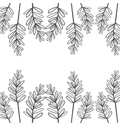 edge of branches with oval leaves vector image