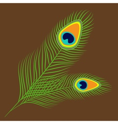 Peacock two feather set collection exotic tropical vector