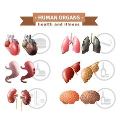 Human Organs Heath Risks Medical Poster vector image vector image