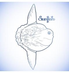 Graphic sunfish vector