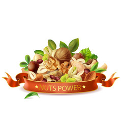 Realistic nuts power banner template vector